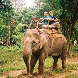 Safari dans le Parc Chitwan en 3 jours