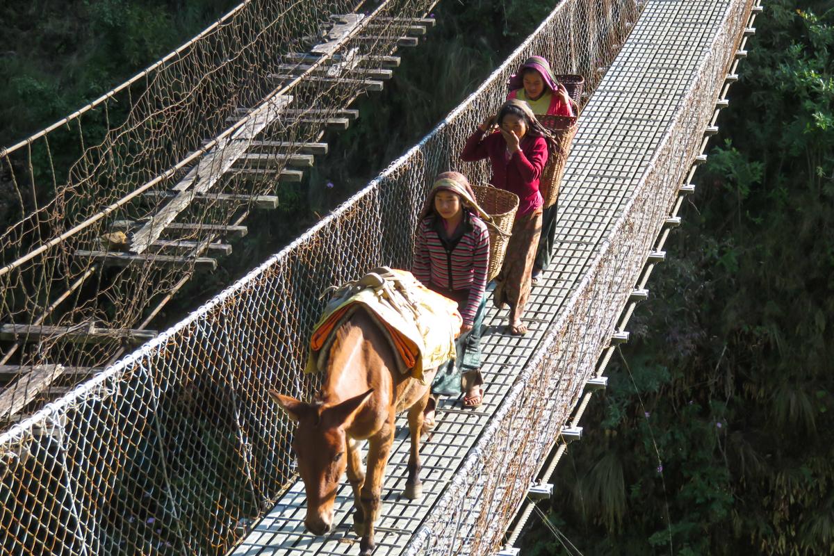 Tour du Manaslu en 16 jours